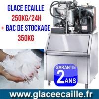 Machine à glace écaille 600kg/24h avec stockage 350 kg