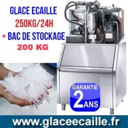 Machine à glace écaille 250kg/24h avec stockage 200 kg