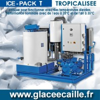 Production de Glace en écaille TROPICALISE