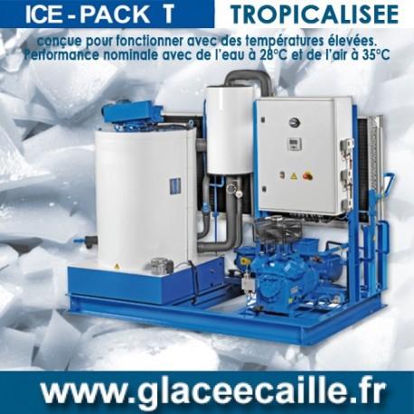 Production de Glace en écaille TROPICALISE