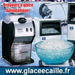BROYEUR A GLACON  1.2 KG / 30 S SANTOS 53