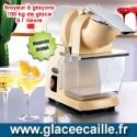 BROYEUR A GLACON  0.8 KG / 30 S SANTOS 09