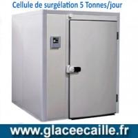 CELLULE DE SURGELATION POISSON 5 TONNES JOUR