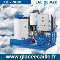 Machine a Production de Glace en écaille EAU DE MER