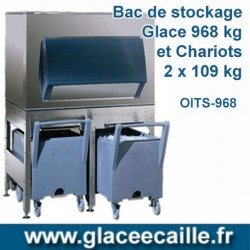 BAC DE STOCKAGE 968 KG ODYSSEE AVEC 2 CHARIOTS
