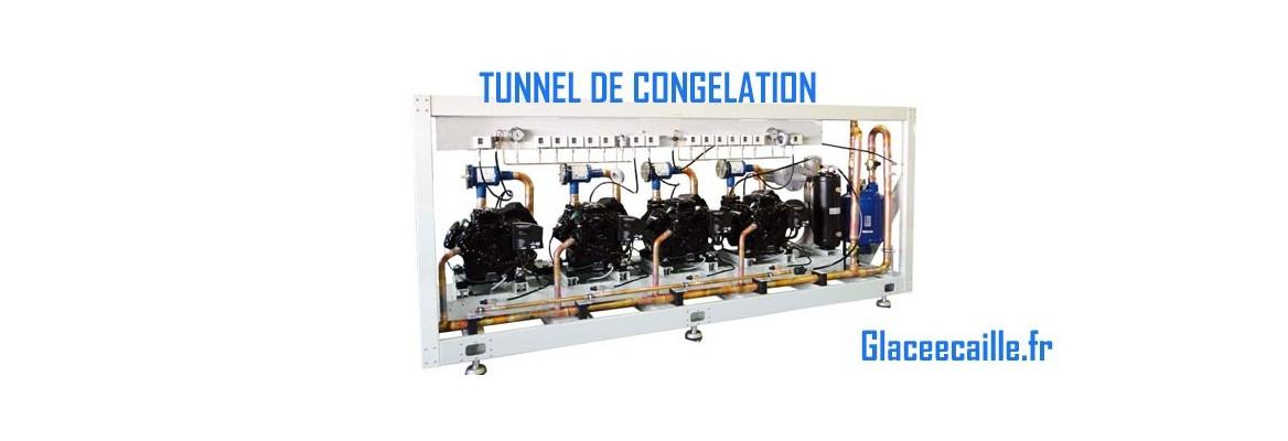 TUNNEL OU CHAMBRE DE CONGELATION