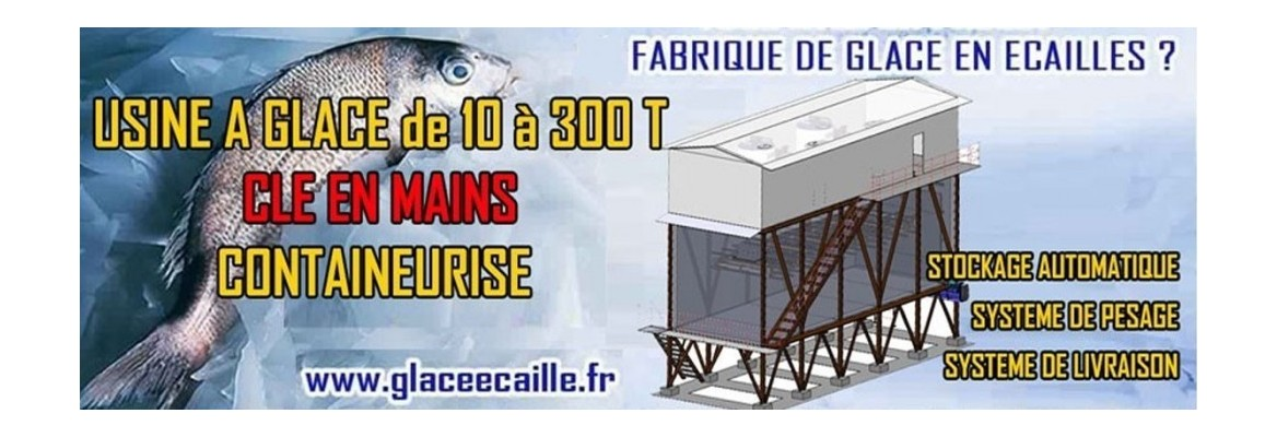 USINE A GLACE CONTAINEUR